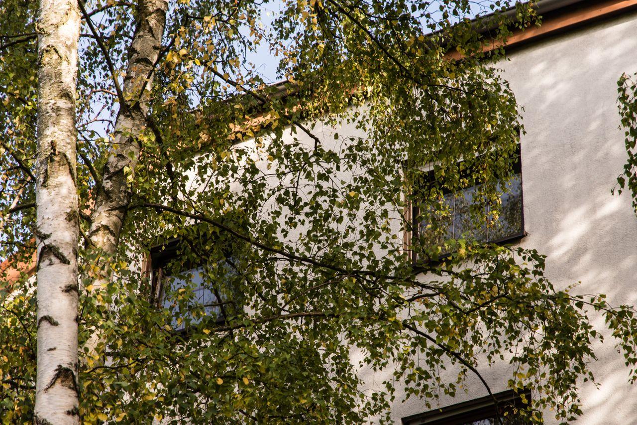 Homburger Landstraße