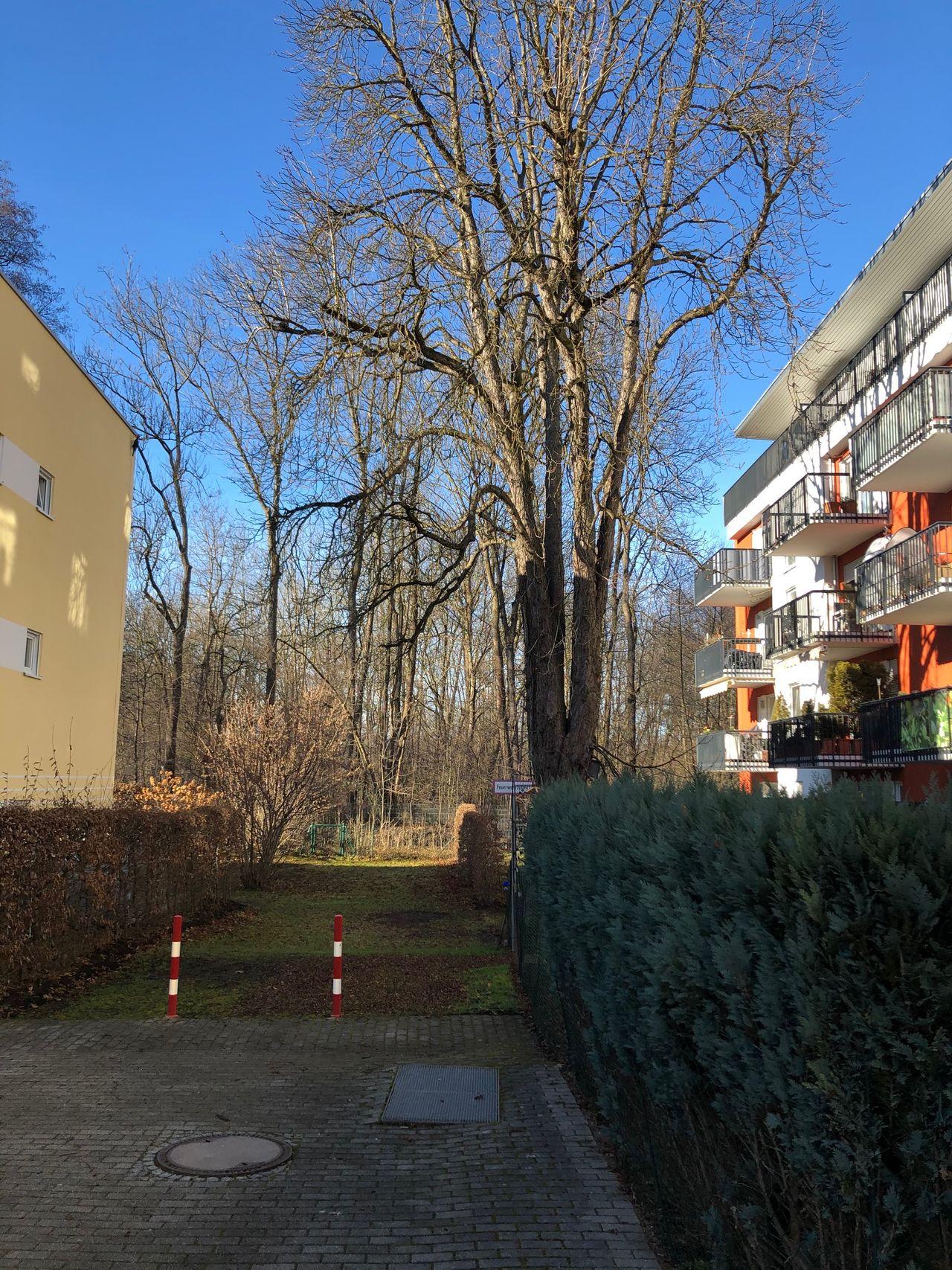 Planegger Straße
